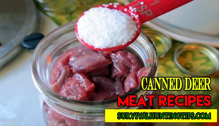Best Canned Deer Meat Recipes to Whip Up Quick, Easy meals