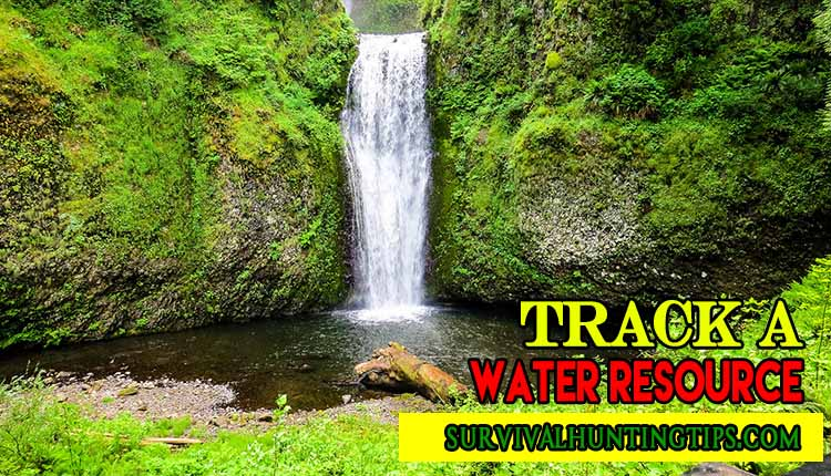 Survival Skills Training - Track a Water Resource