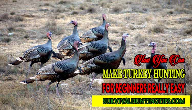 How to - Turkey Hunting for Beginners