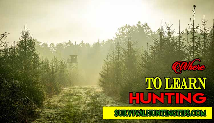 Where to learn Hunting