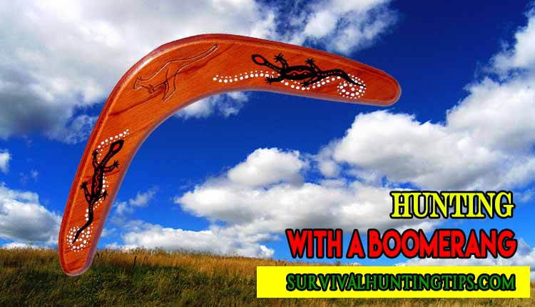 A Foolproof Guide On Hunting With A Boomerang