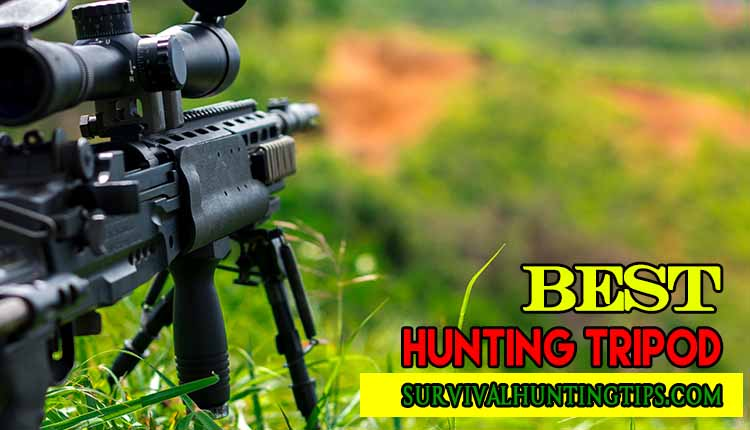 Best Hunting Tripod How To Choose The Best One
