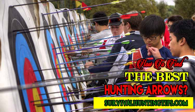 How To Find The Best Hunting Arrows
