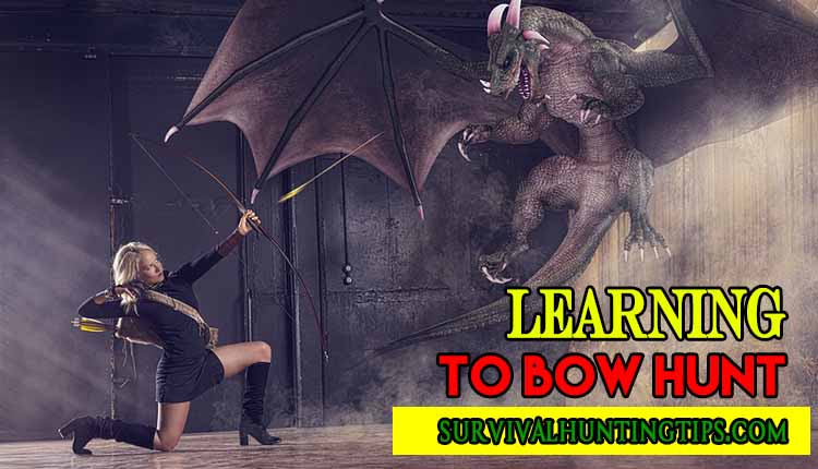 Learning To Bow Hunt – How To Start Bow Hunting