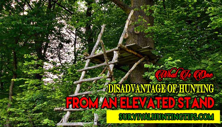 What Is One Disadvantage Of Hunting From An Elevated Stand