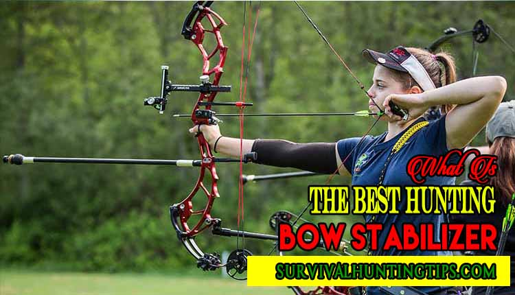 What Is The Best Hunting Bow Stabilizer?