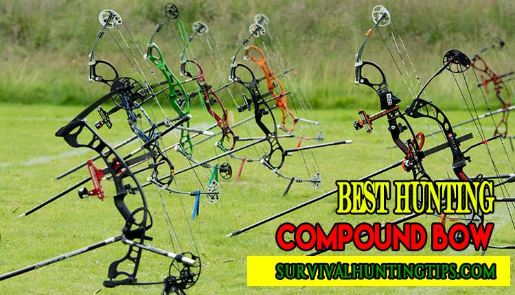How To Find The Best Hunting Compound Bow