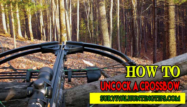 How To Uncock A Crossbow Like A Pro
