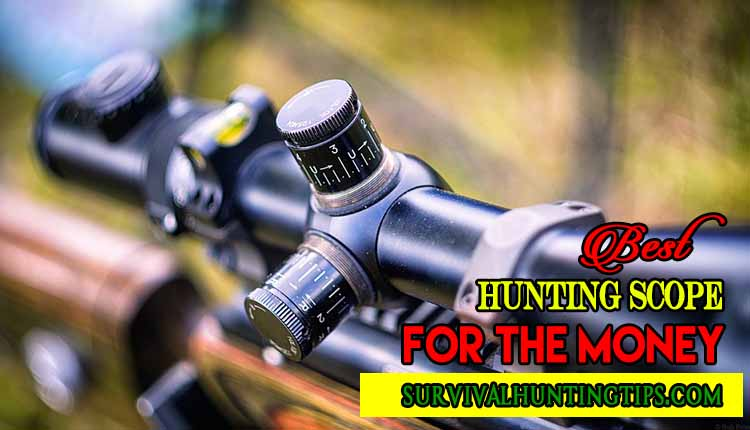 Best Hunting Scope For The Money