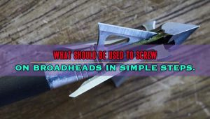 What Should Be Used to Screw on Broadheads in Simple Steps